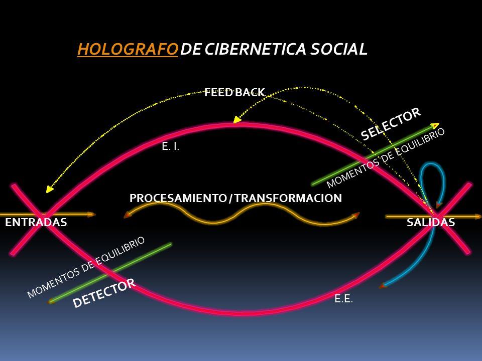 HOLOGRAFO DE CIBERNETICA SOCIAL