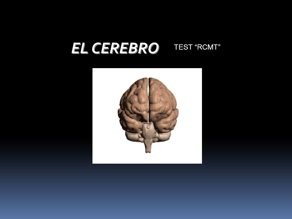 EL CEREBRO TEST RCMT