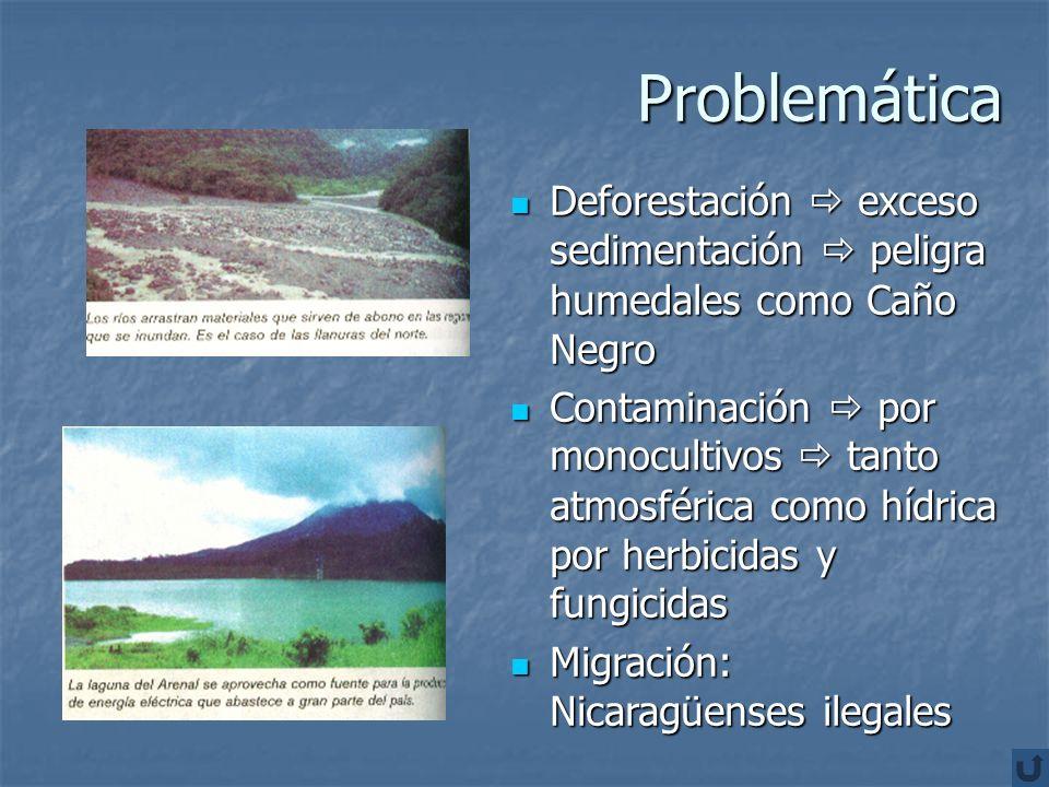 Problemática Deforestación  exceso sedimentación  peligra humedales como Caño Negro.