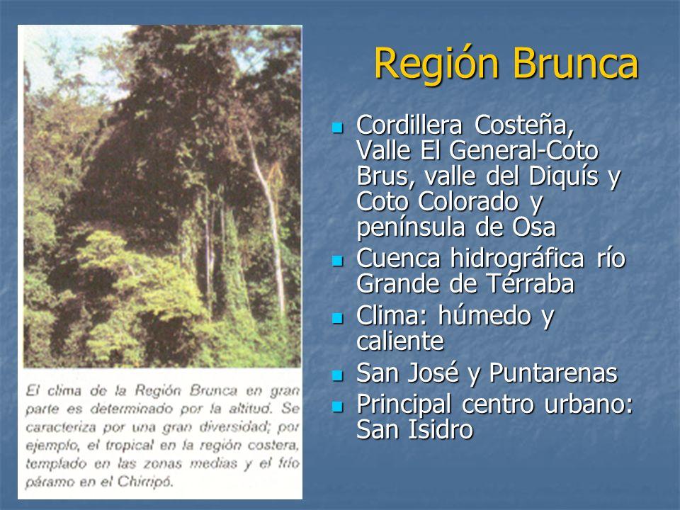 Región BruncaCordillera Costeña, Valle El General-Coto Brus, valle del Diquís y Coto Colorado y península de Osa.