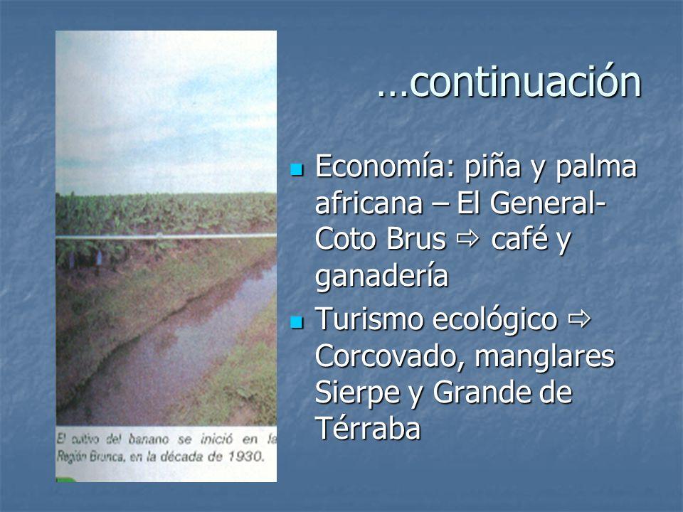 …continuaciónEconomía: piña y palma africana – El General-Coto Brus  café y ganadería.