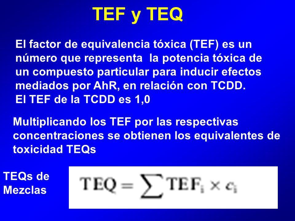 TEF y TEQ