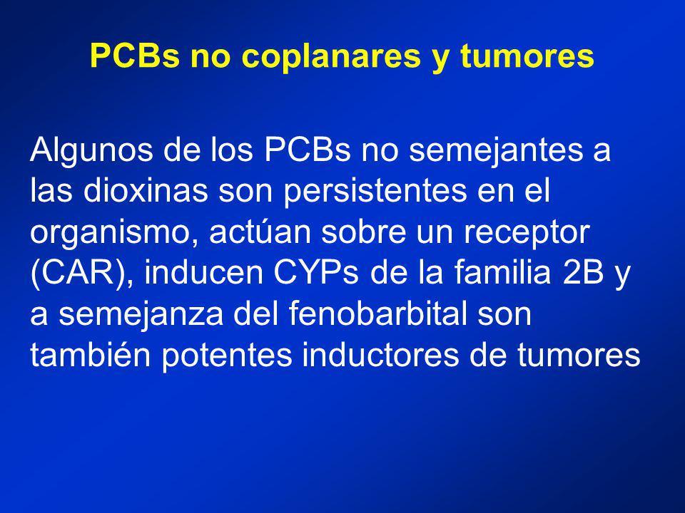 PCBs no coplanares y tumores