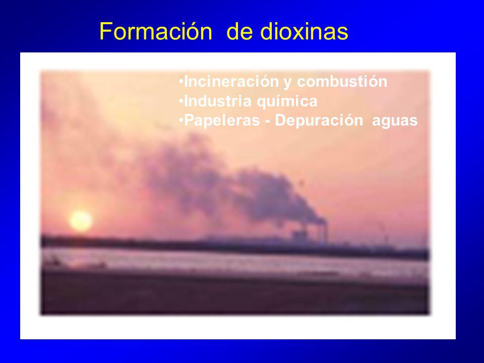 Formación de dioxinas Incineración y combustión Industria química