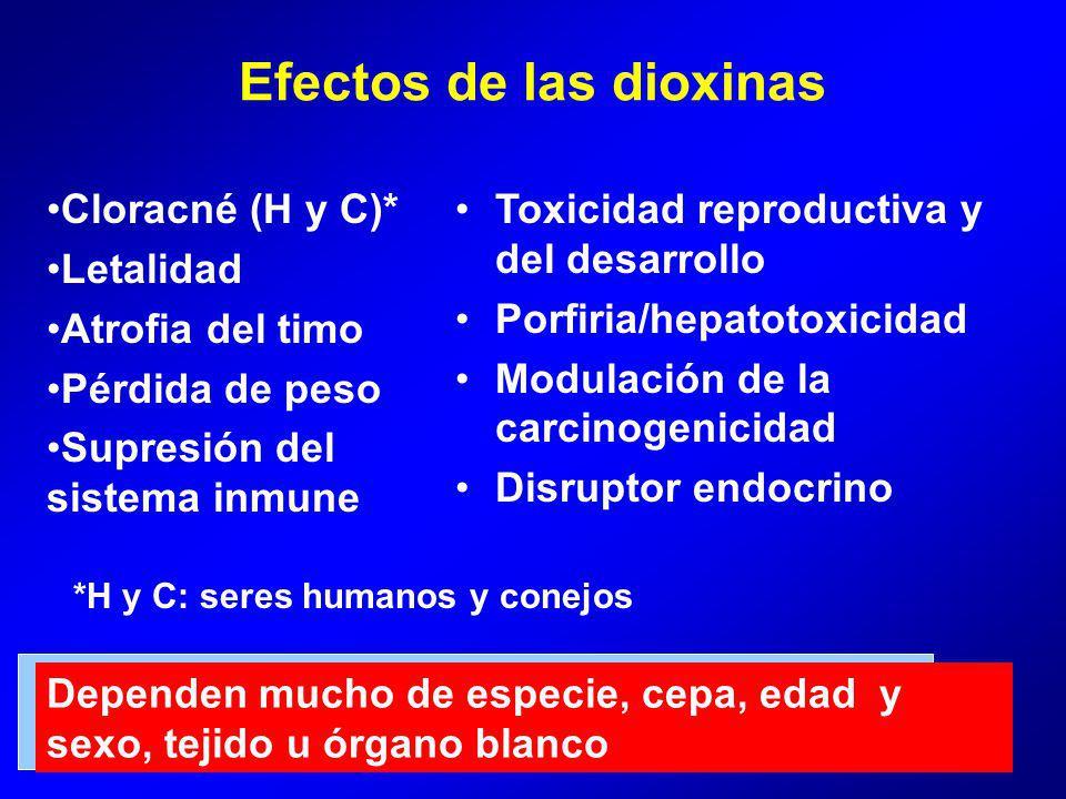 Efectos de las dioxinas