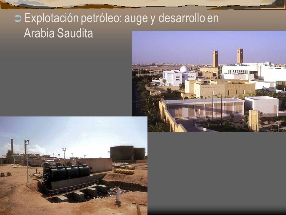 Explotación petróleo: auge y desarrollo en Arabia Saudita