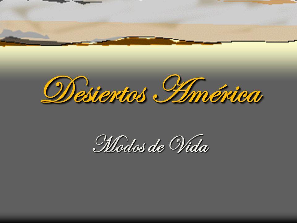 Desiertos América Modos de Vida