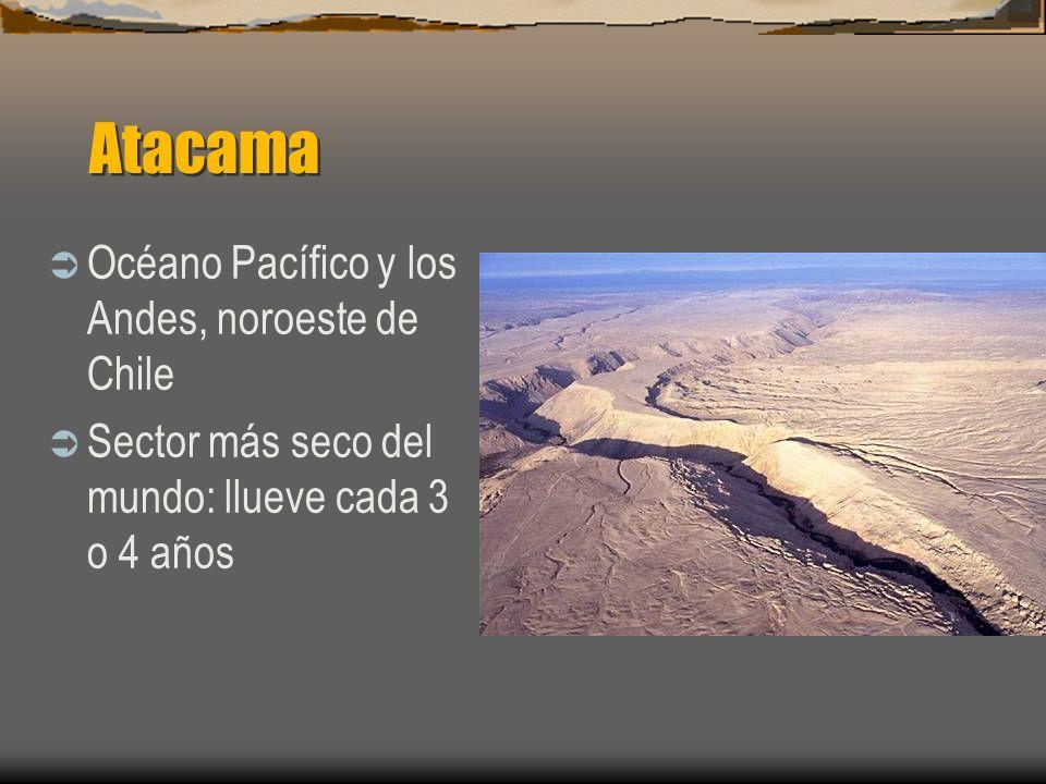 Atacama Océano Pacífico y los Andes, noroeste de Chile