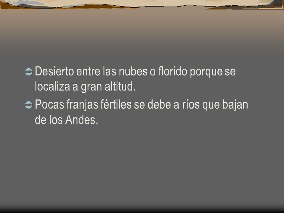 Desierto entre las nubes o florido porque se localiza a gran altitud.