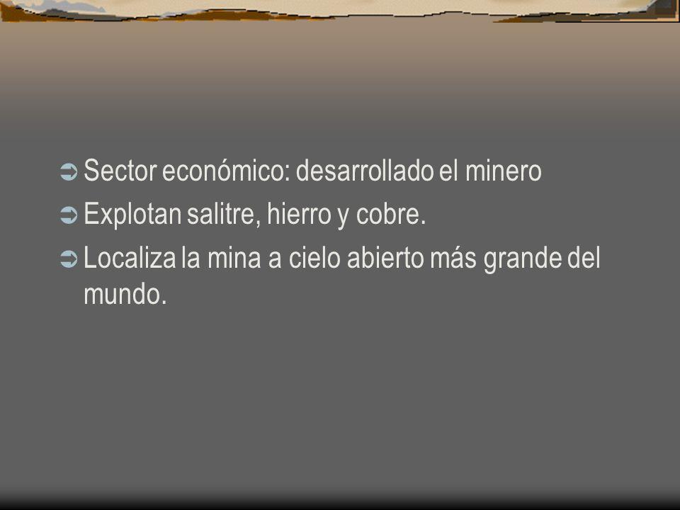 Sector económico: desarrollado el minero