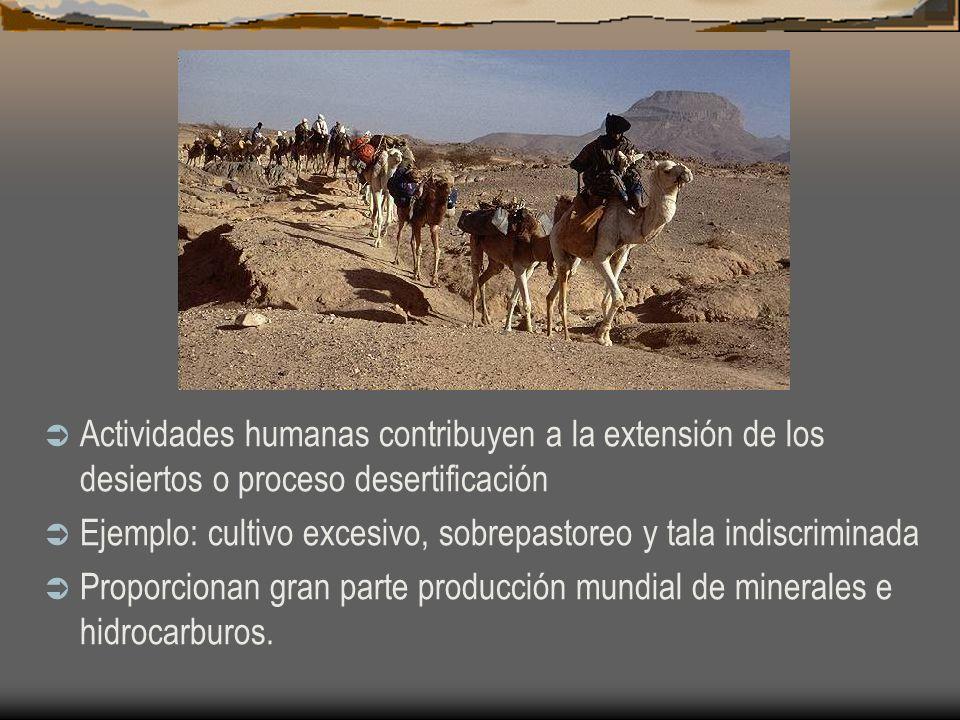 Actividades humanas contribuyen a la extensión de los desiertos o proceso desertificación