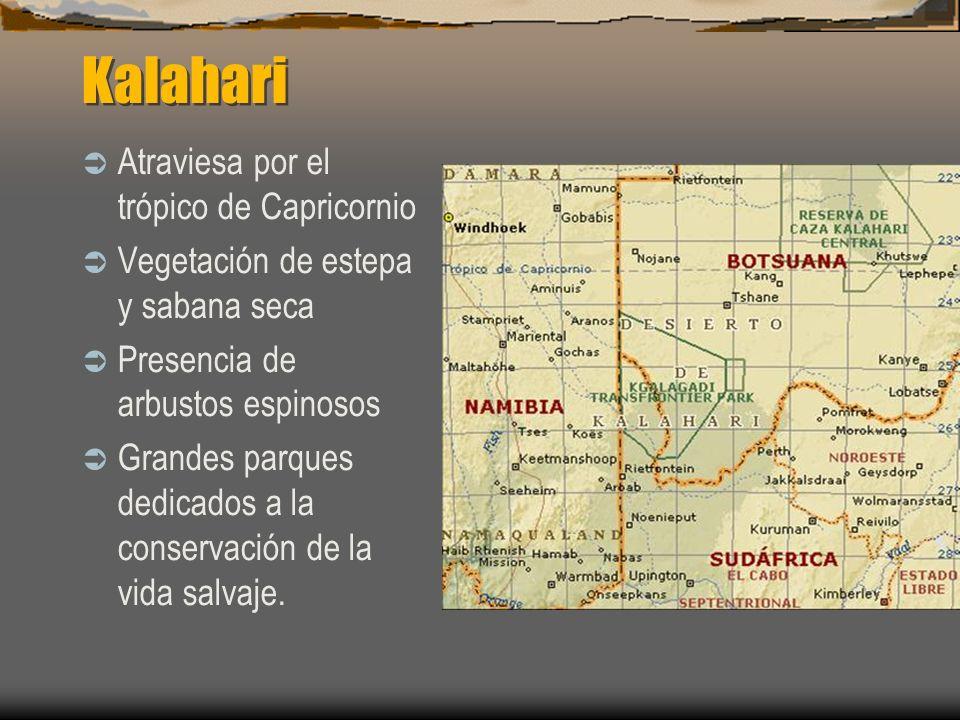 Kalahari Atraviesa por el trópico de Capricornio