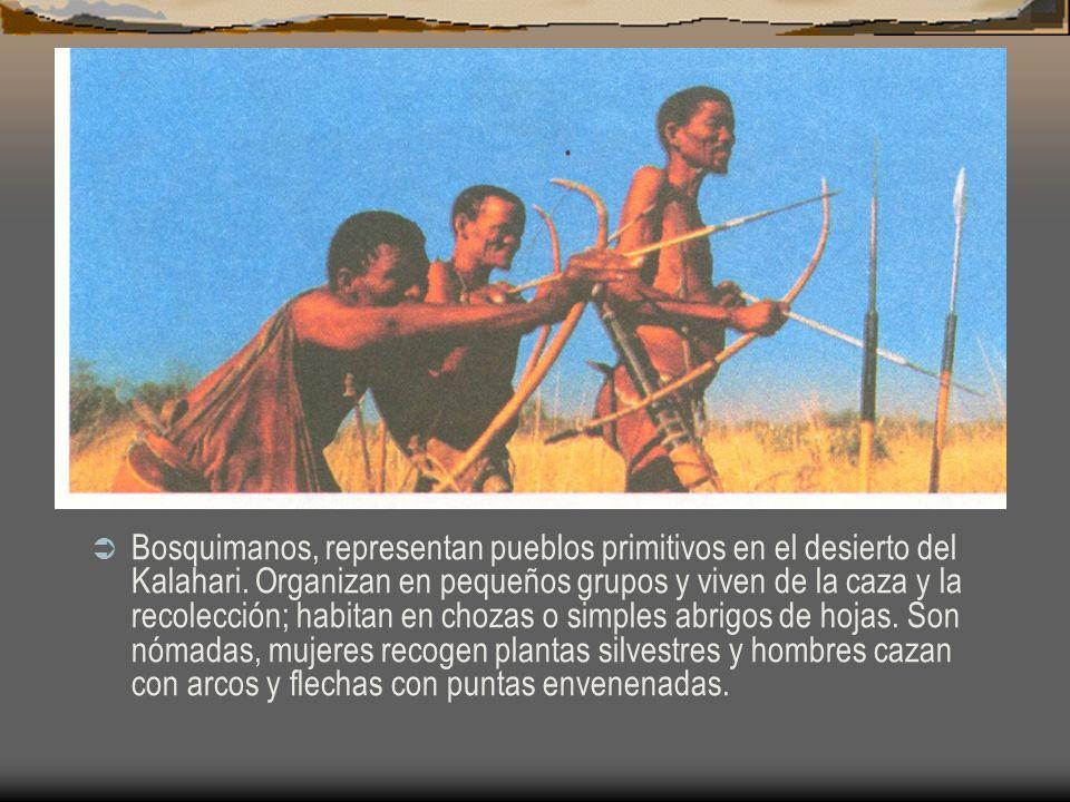 Bosquimanos, representan pueblos primitivos en el desierto del Kalahari.