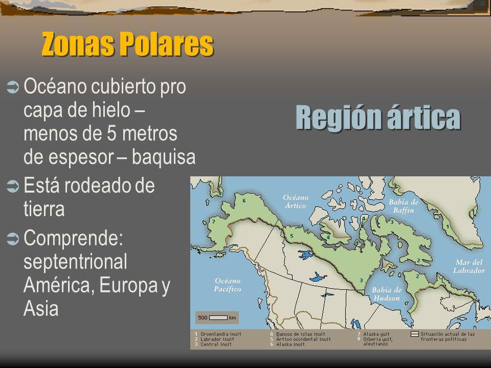 Zonas Polares Región ártica