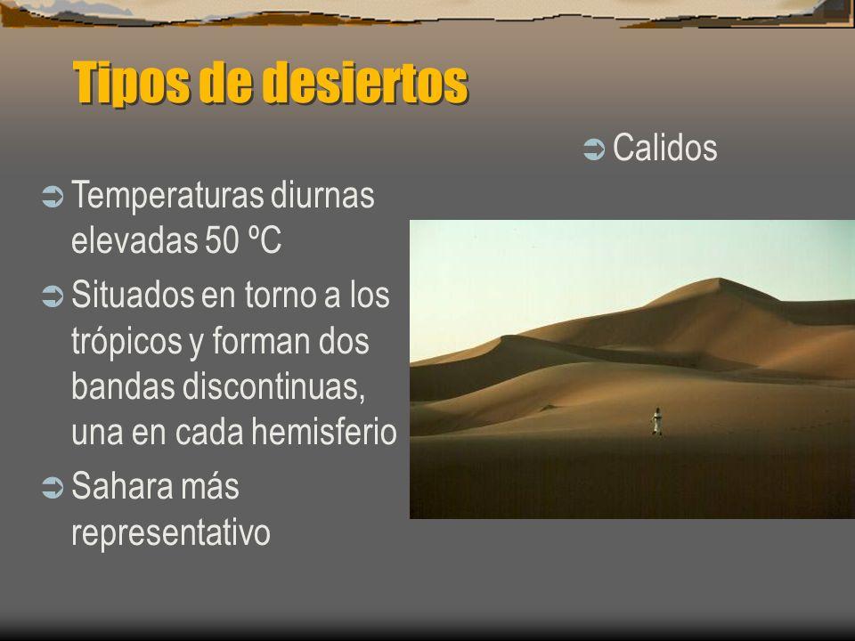 Tipos de desiertos Calidos Temperaturas diurnas elevadas 50 ºC