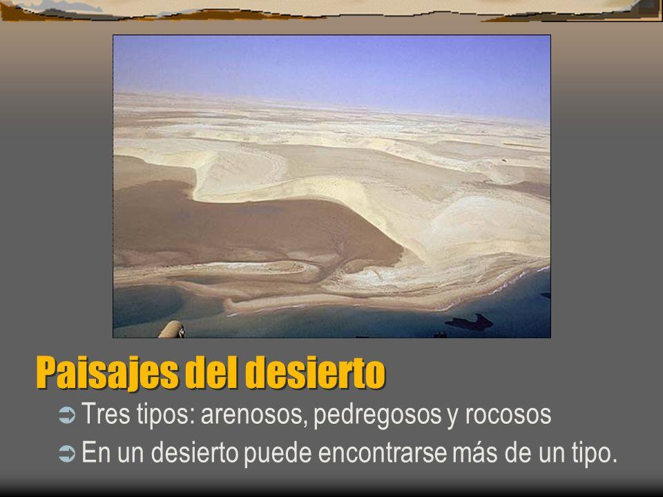 Paisajes del desierto Tres tipos: arenosos, pedregosos y rocosos