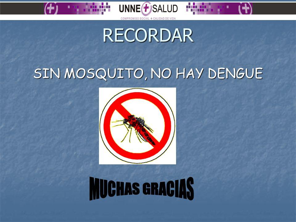 SIN MOSQUITO, NO HAY DENGUE