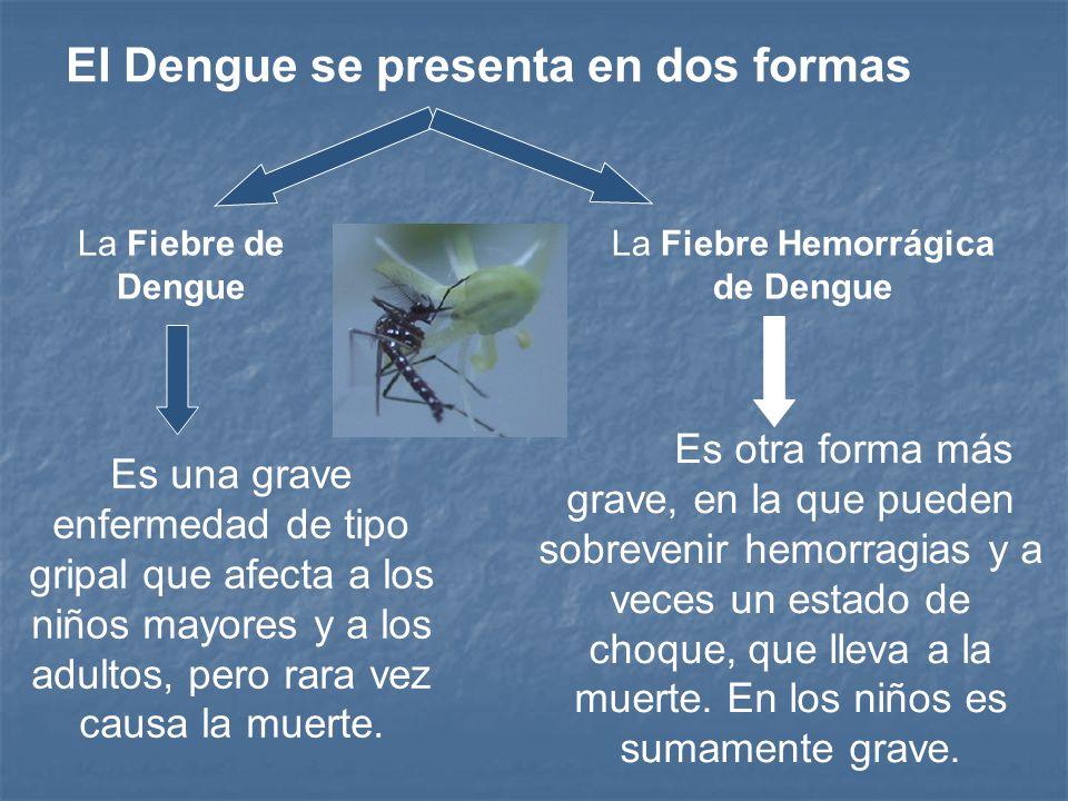 La Fiebre Hemorrágica de Dengue