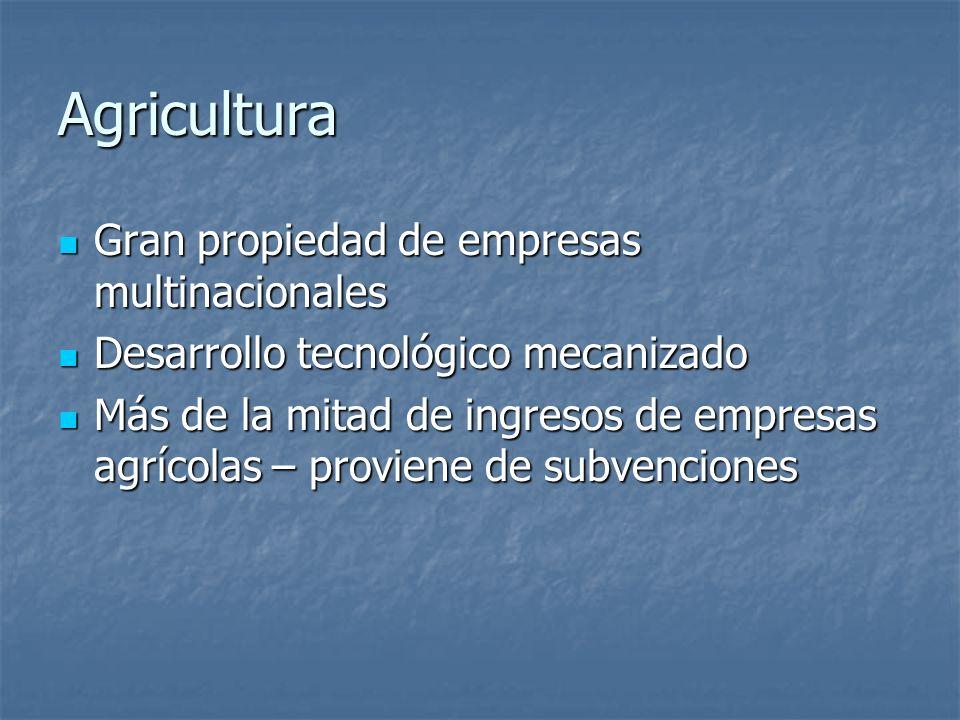 Agricultura Gran propiedad de empresas multinacionales