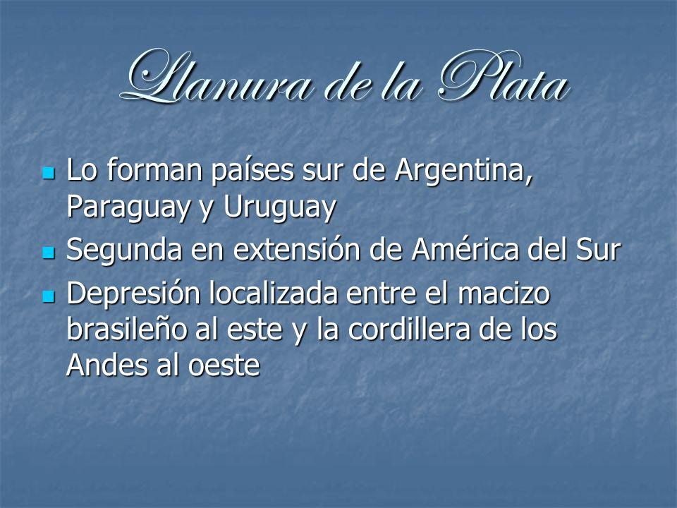 Llanura de la PlataLo forman países sur de Argentina, Paraguay y Uruguay. Segunda en extensión de América del Sur.