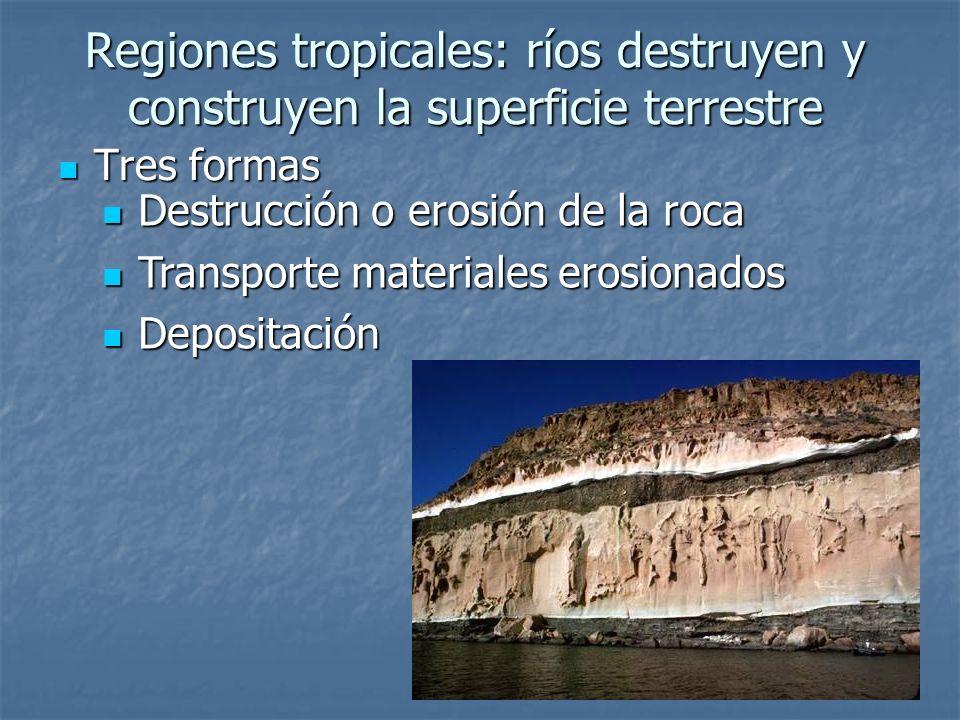 Regiones tropicales: ríos destruyen y construyen la superficie terrestre