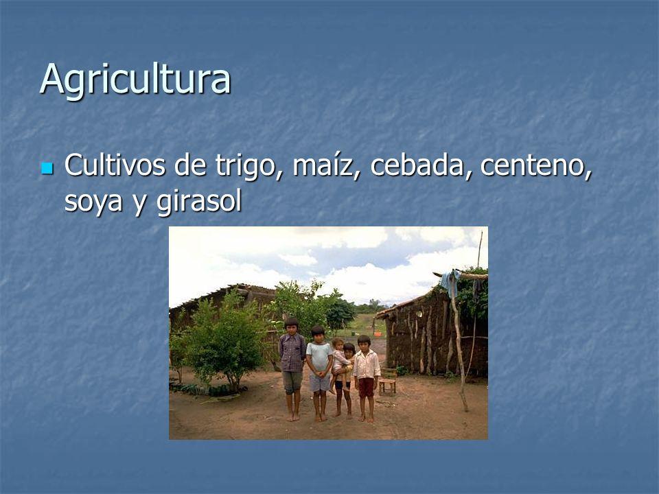 Agricultura Cultivos de trigo, maíz, cebada, centeno, soya y girasol