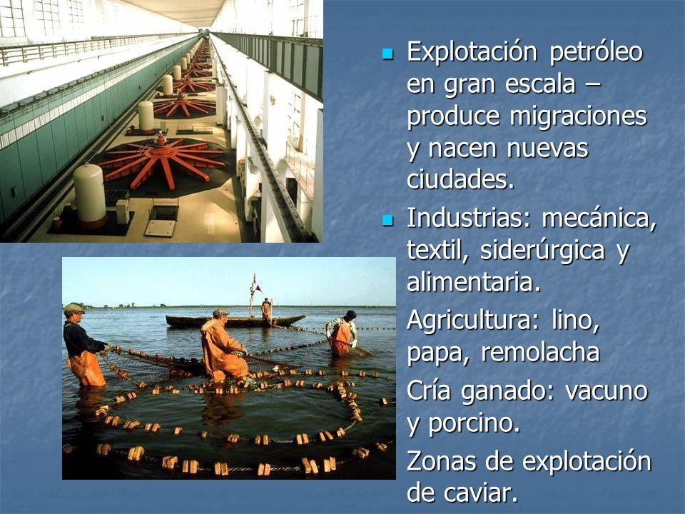Explotación petróleo en gran escala – produce migraciones y nacen nuevas ciudades.