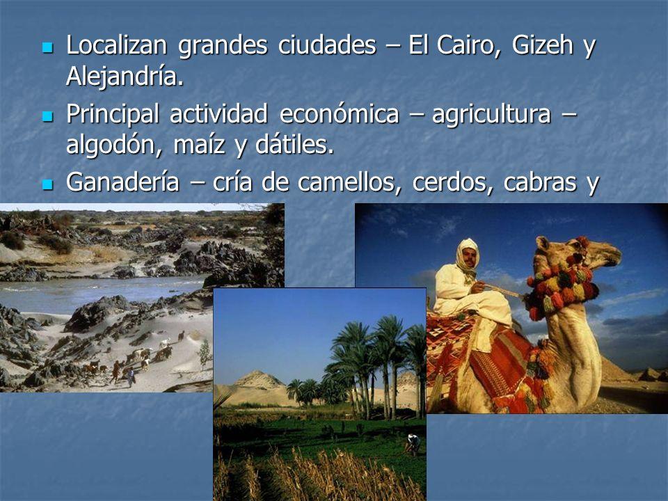 Localizan grandes ciudades – El Cairo, Gizeh y Alejandría.
