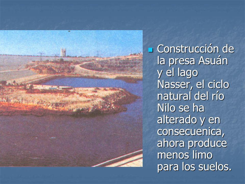 Construcción de la presa Asuán y el lago Nasser, el ciclo natural del río Nilo se ha alterado y en consecuenica, ahora produce menos limo para los suelos.