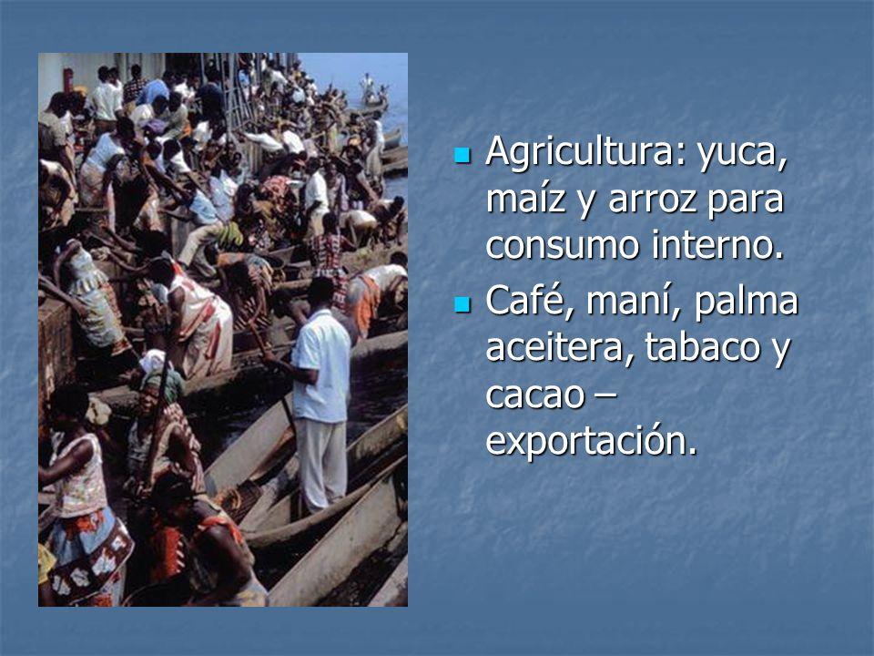 Agricultura: yuca, maíz y arroz para consumo interno.