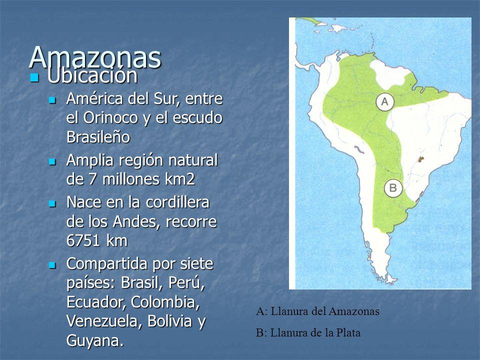 Amazonas Ubicación. América del Sur, entre el Orinoco y el escudo Brasileño. Amplia región natural de 7 millones km2.