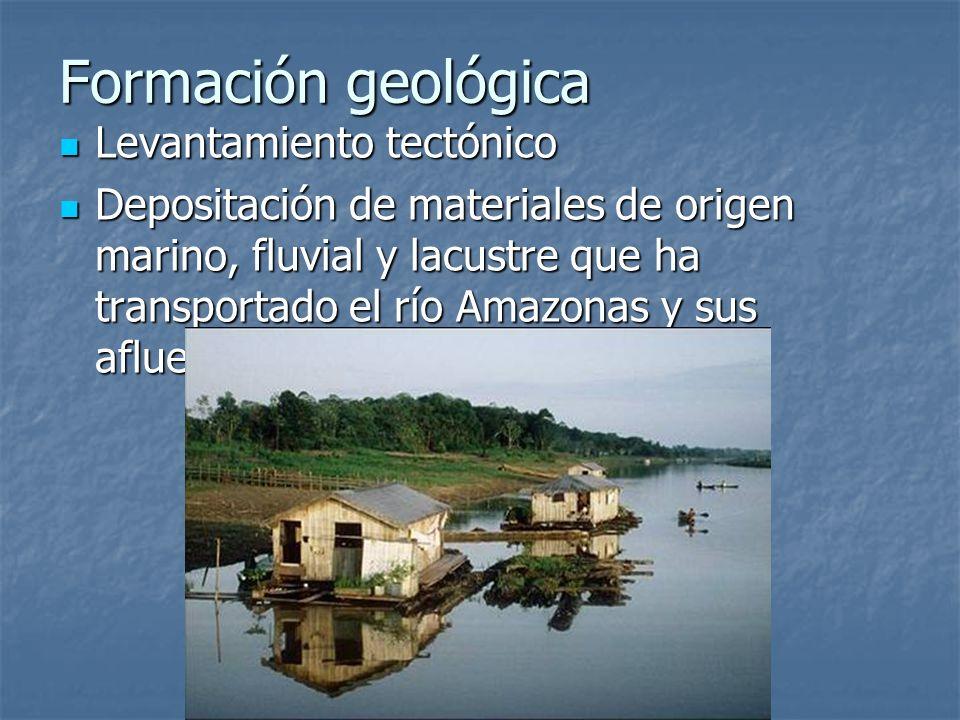 Formación geológica Levantamiento tectónico
