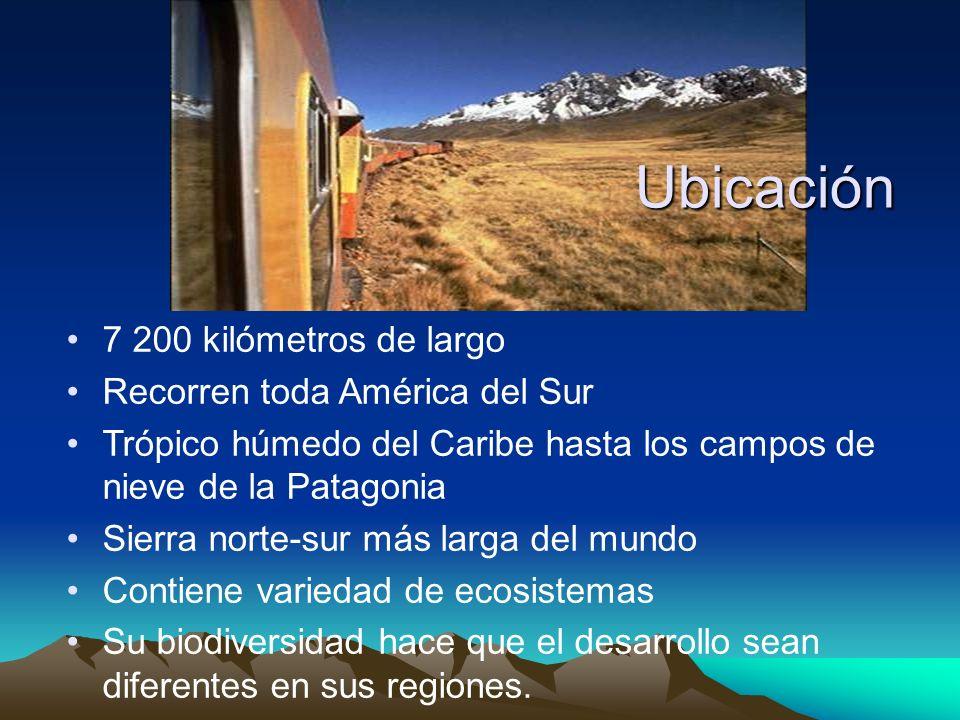 Ubicación 7 200 kilómetros de largo Recorren toda América del Sur