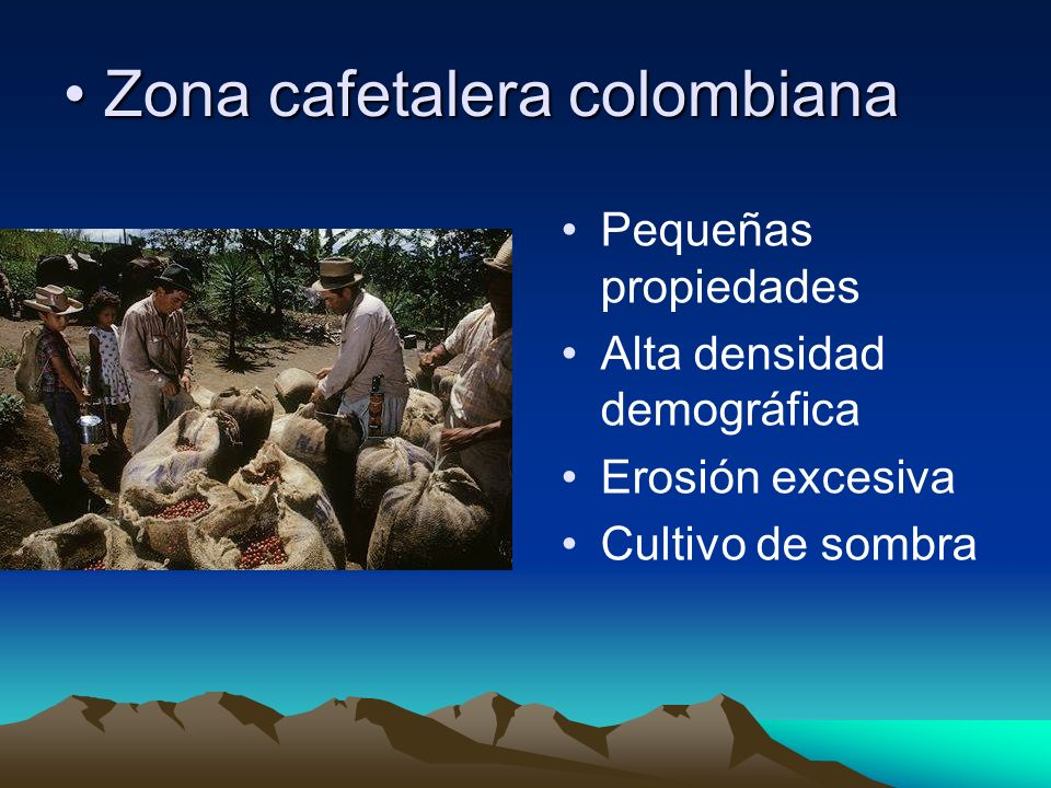Zona cafetalera colombiana
