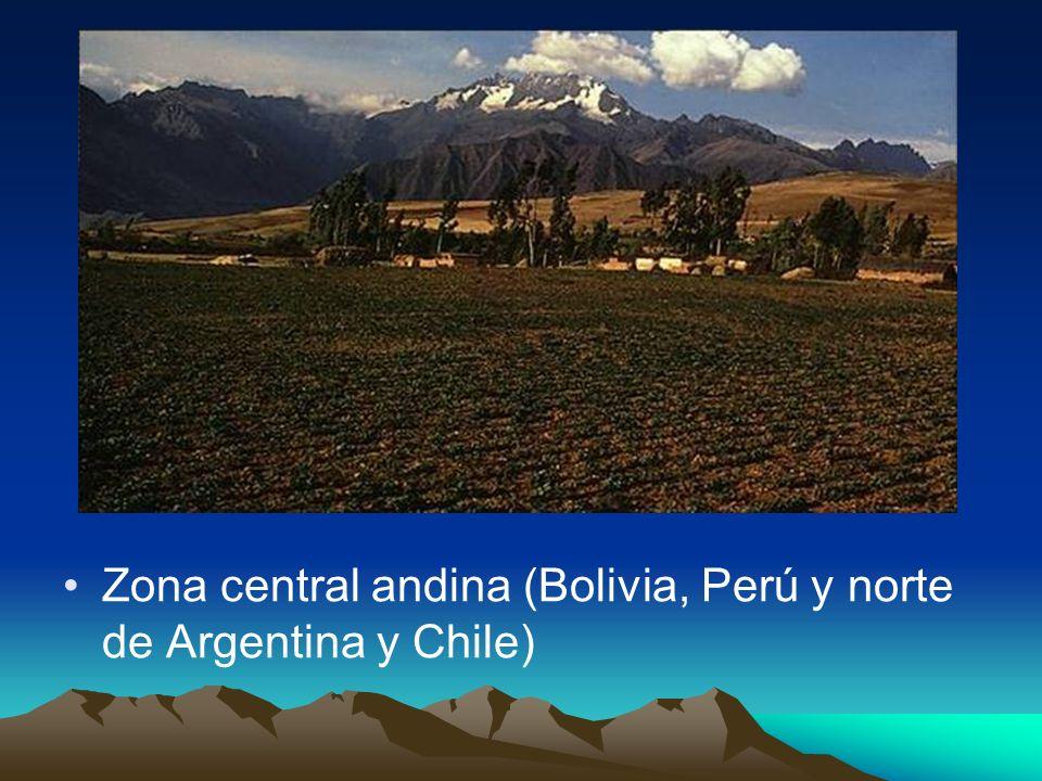 Zona central andina (Bolivia, Perú y norte de Argentina y Chile)