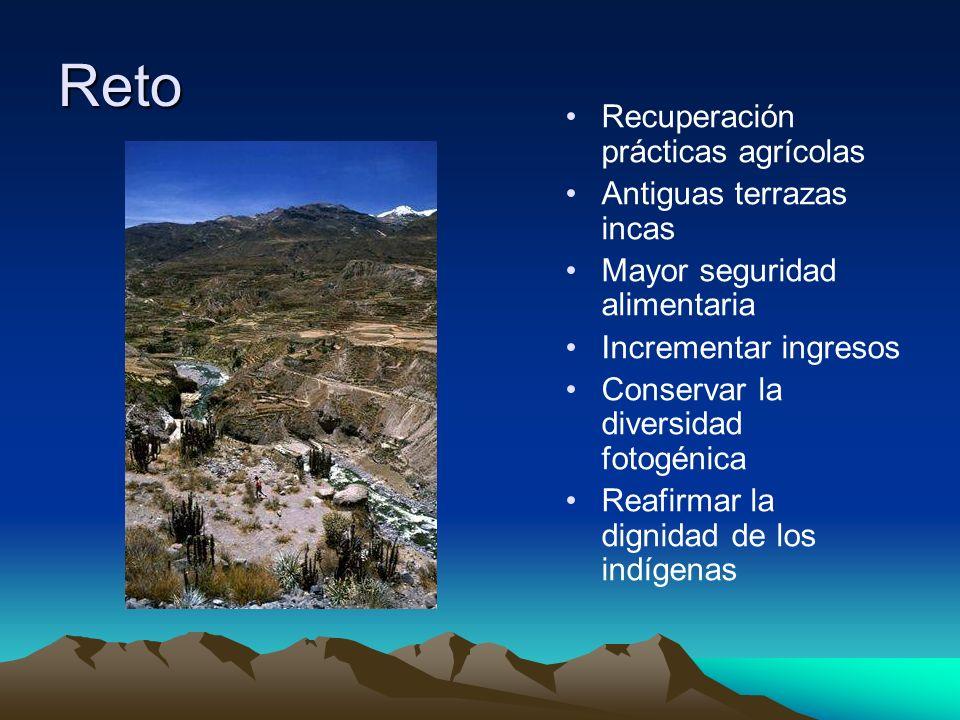 Reto Recuperación prácticas agrícolas Antiguas terrazas incas