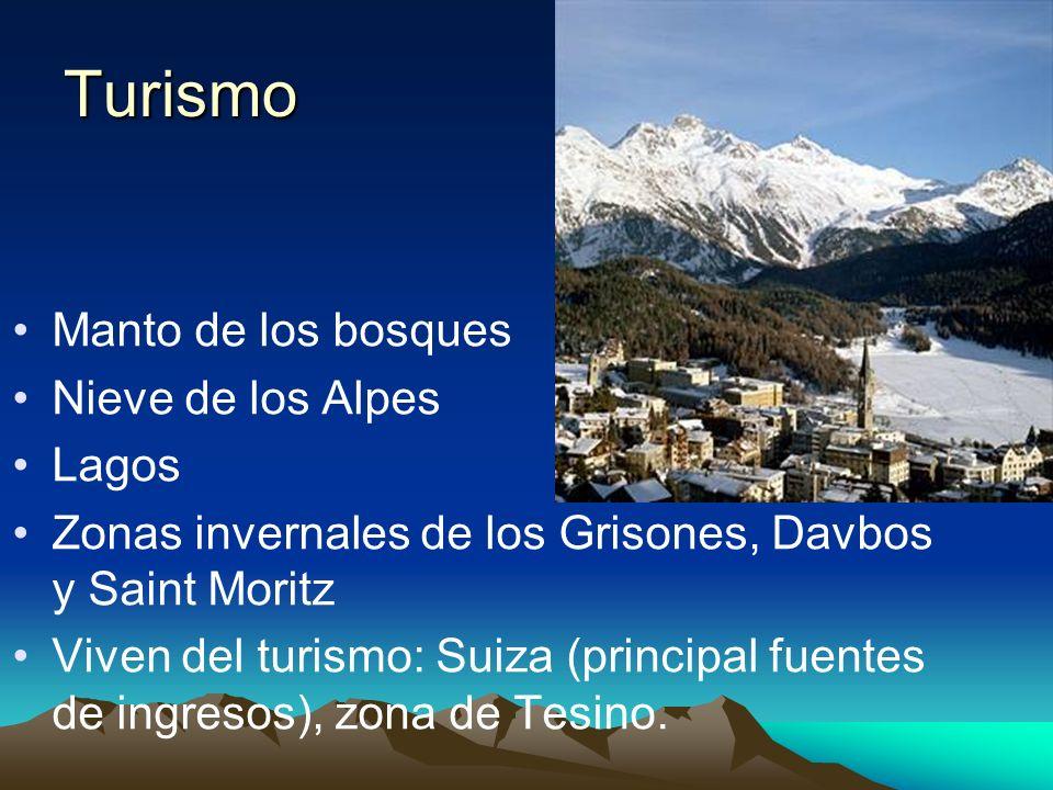 Turismo Manto de los bosques Nieve de los Alpes Lagos
