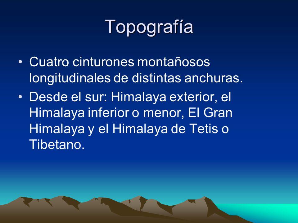 Topografía Cuatro cinturones montañosos longitudinales de distintas anchuras.