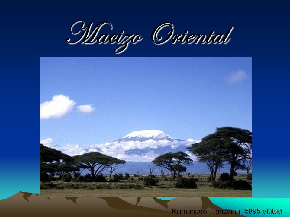 Macizo Oriental Africano