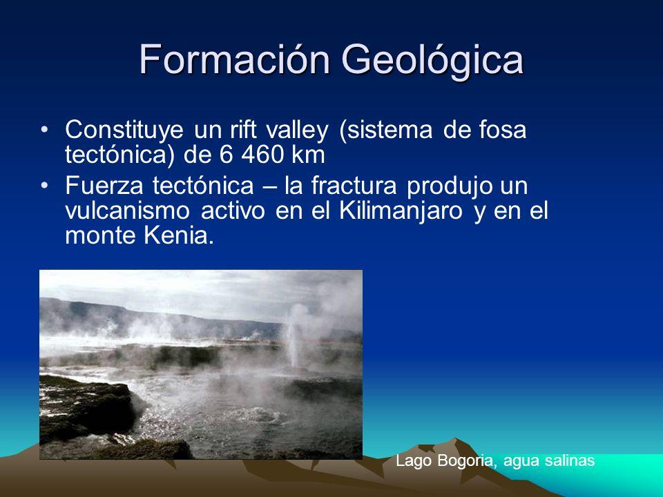 Formación Geológica Constituye un rift valley (sistema de fosa tectónica) de 6 460 km.