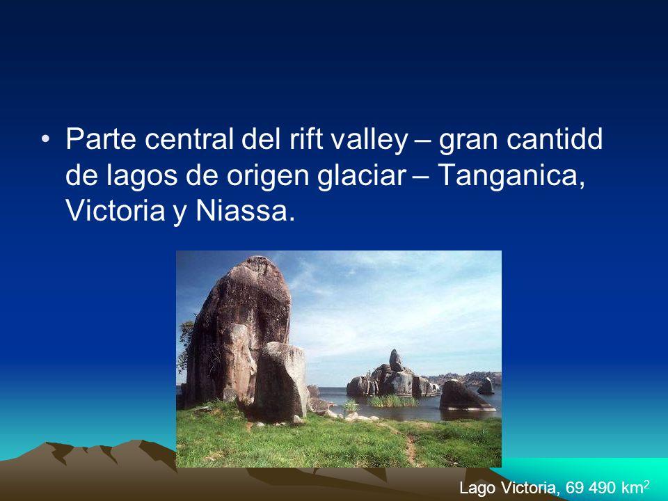 Parte central del rift valley – gran cantidd de lagos de origen glaciar – Tanganica, Victoria y Niassa.