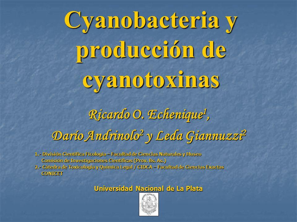 Cyanobacteria y producción de cyanotoxinas