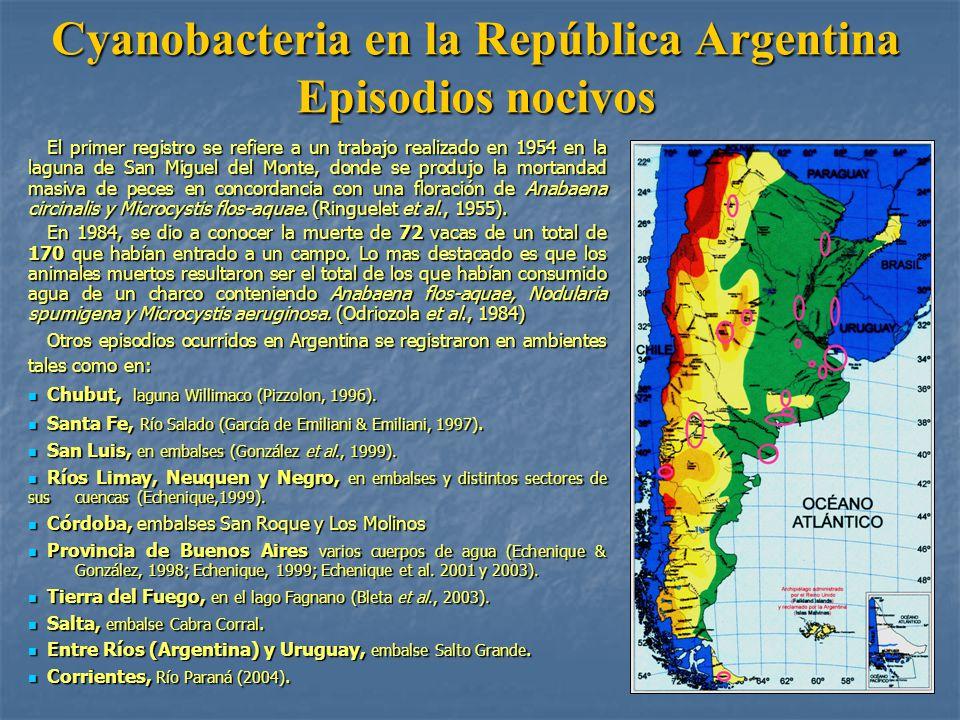 Cyanobacteria en la República Argentina Episodios nocivos