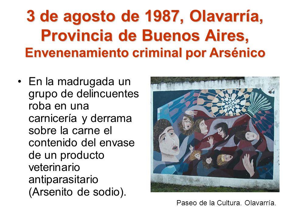 3 de agosto de 1987, Olavarría, Provincia de Buenos Aires, Envenenamiento criminal por Arsénico