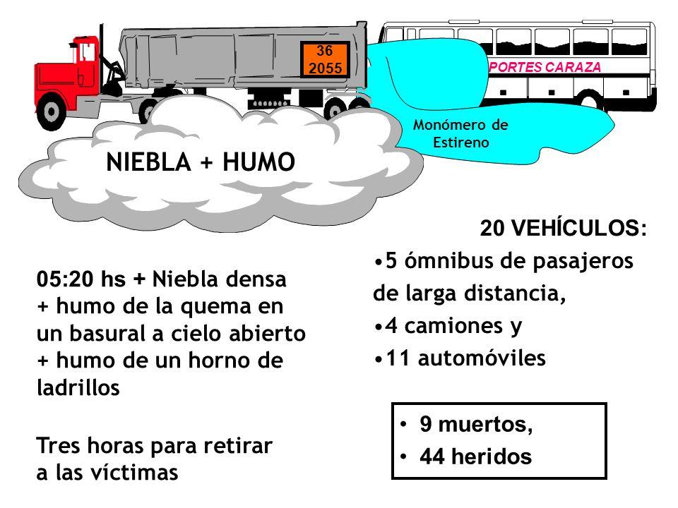 NIEBLA + HUMO 20 VEHÍCULOS: 5 ómnibus de pasajeros de larga distancia,
