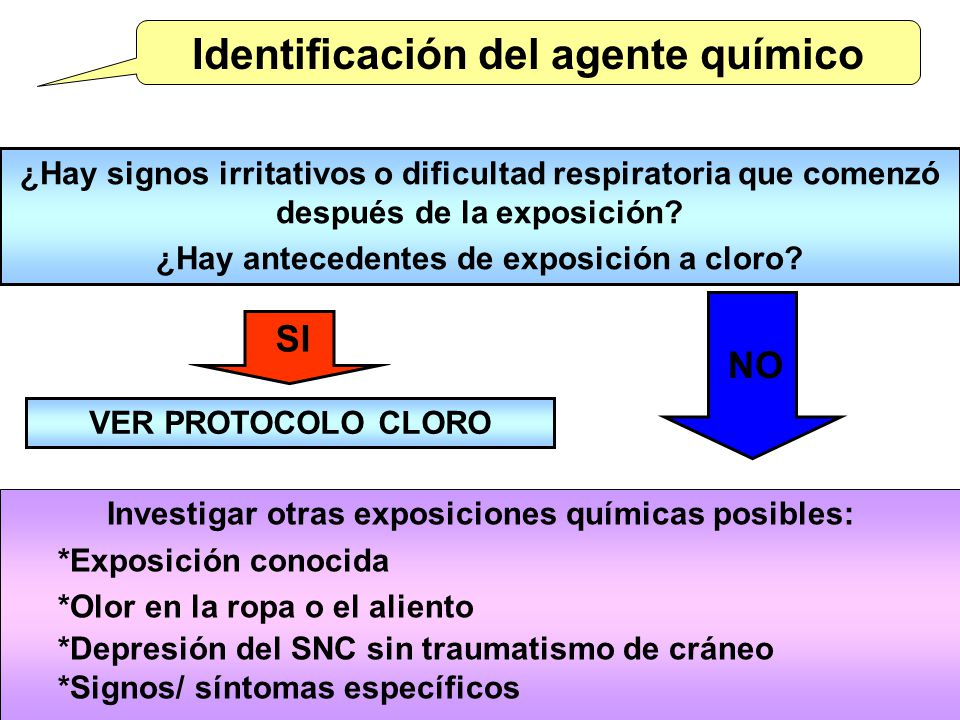 Identificación del agente químico