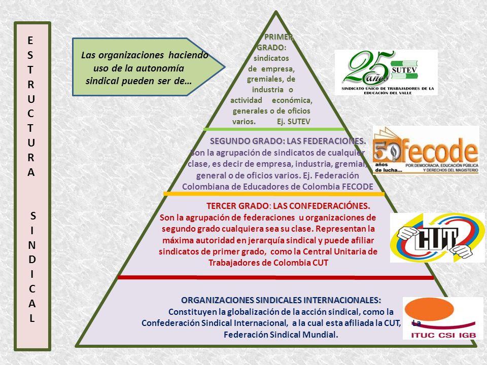 PRIMER GRADO: sindicatos de empresa, gremiales, de