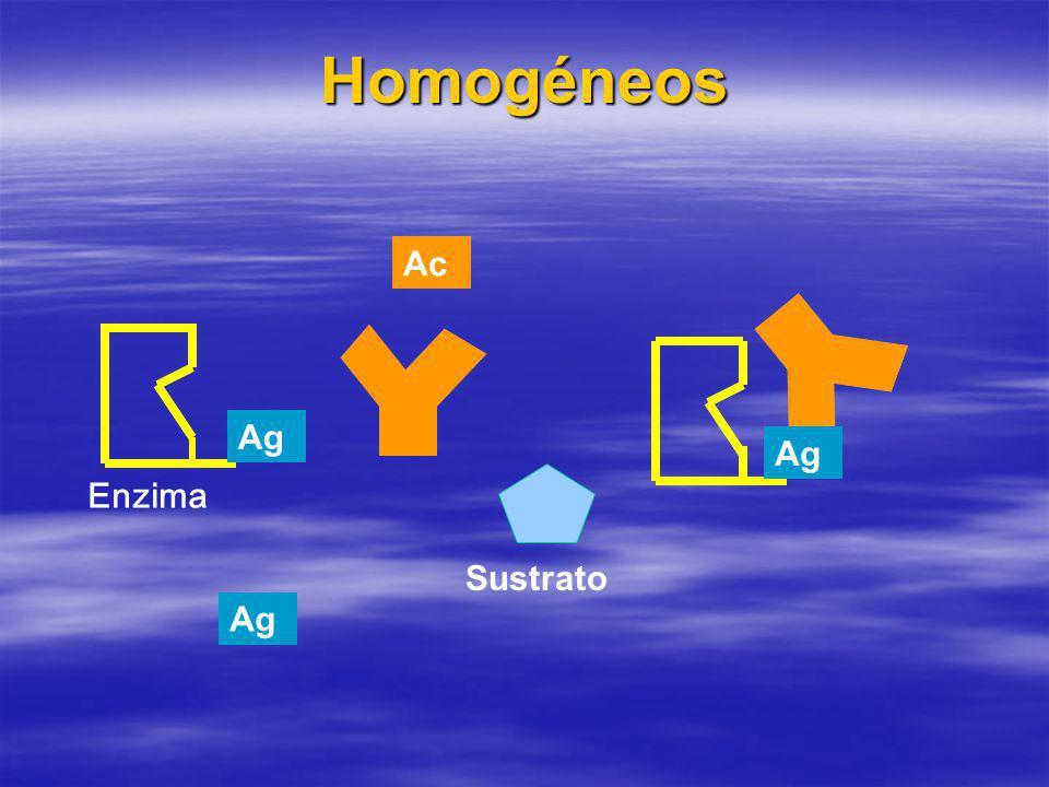 Homogéneos Ac Ag Ag Enzima Sustrato Ag
