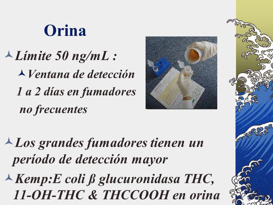 Orina Límite 50 ng/mL : Ventana de detección. 1 a 2 días en fumadores. no frecuentes. Los grandes fumadores tienen un período de detección mayor.