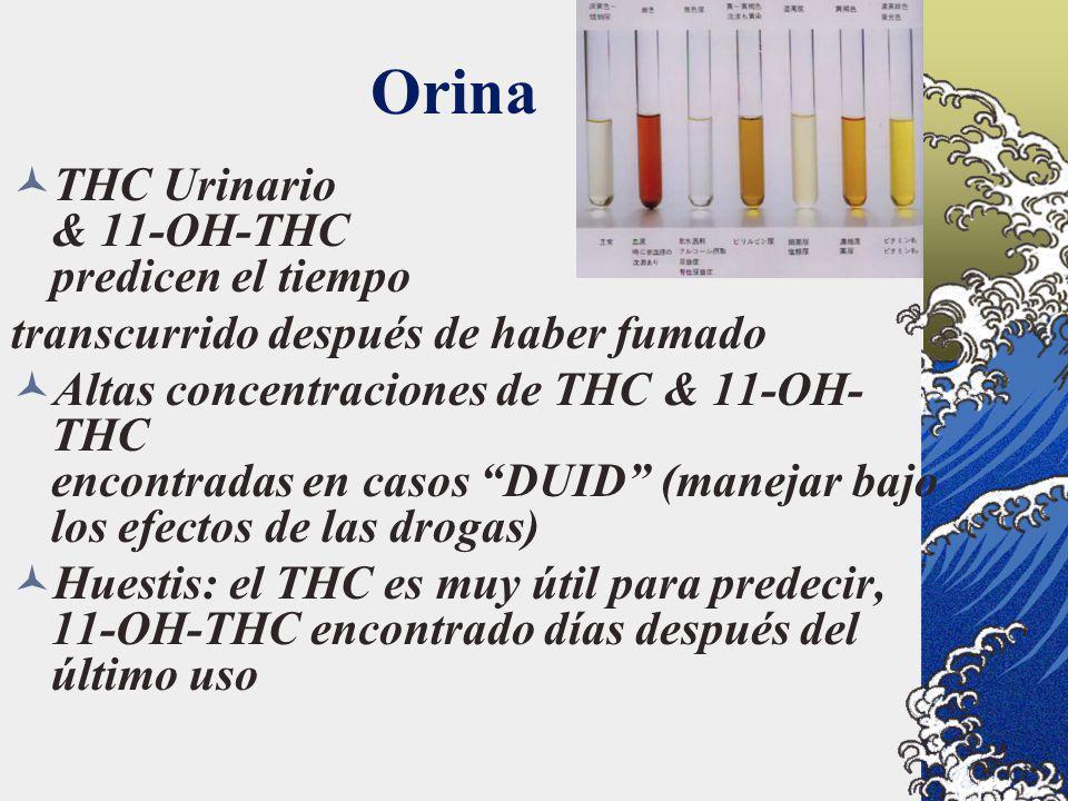 Orina THC Urinario & 11-OH-THC predicen el tiempo